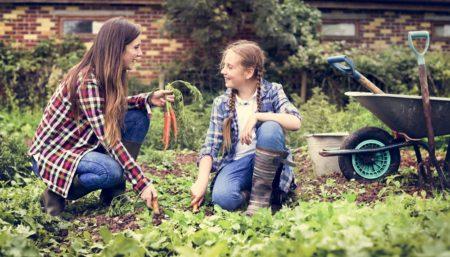 """L'importanza delle piante e il mito del """"pollice verde"""""""